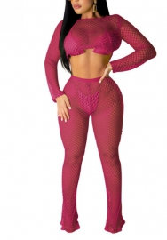 (Not Bikini Set)Women Sexy Net Hollow Bright Color Long Sleeve Crop Tops And Long Pants 2 Piece Suit
